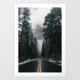 Forest Way Art Print