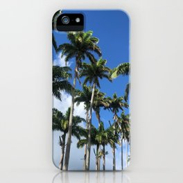 Tropical Palm Trees in Carribean Blue Sky iPhone Case