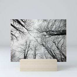 Routes To The Sky Mini Art Print