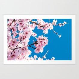Spring arms Art Print