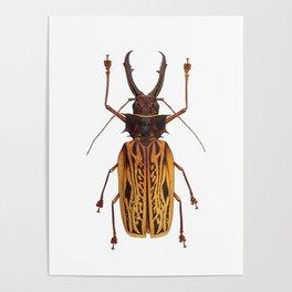 Macrodontia Cervicornis Sabertooth Beetle Poster
