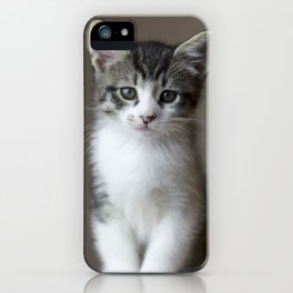 Jack - Kitten Portrait #2 (2016) iPhone Case