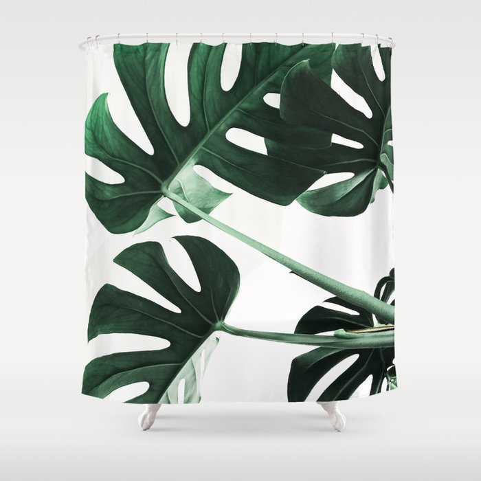 Monstera plant Shower Curtain