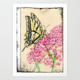 Collette's butterfly Art Print