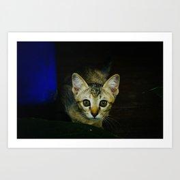 wide-eyed Art Print