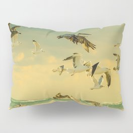 Flight Pattern Pillow Sham