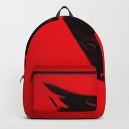 Equilateral Backpack