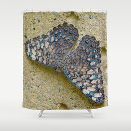 Turquoise and Sand Butterfly by Teresa Thompson Shower Curtain