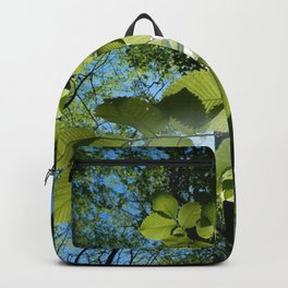 Sunlight Canopy IV Backpack
