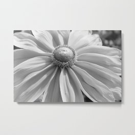 Floral Close-Up Metal Print