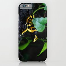 Poison Dart Frog D. Leucomelas Slim Case iPhone 6s