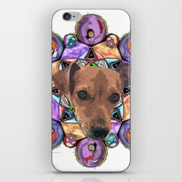 this is lenny iPhone Skin