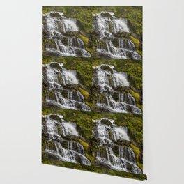 Cascada Del Toro Wallpaper
