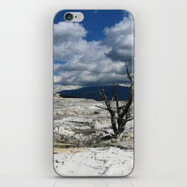 Minerva Spring and Terrace iPhone Skin