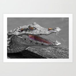 The smiling crocodile and the flies Art Print