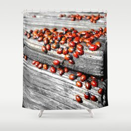 When the Ladybugs were Everywhere Shower Curtain