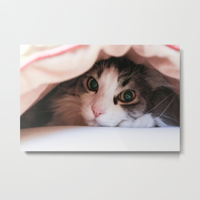 are you looking for me? Metal Print