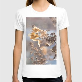 Sunlight through Dried Flowers T-shirt