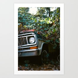 Vintage Car in Trees Film Photo Art Print