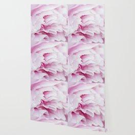 Pink Flower Petals Wallpaper