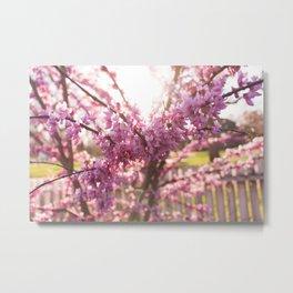 Blossoms Pt. 2 Metal Print