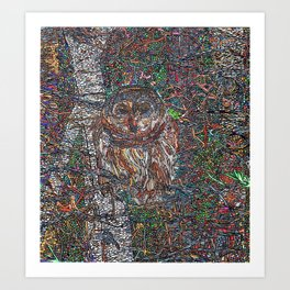 Owl in a Birch Grove Art Print