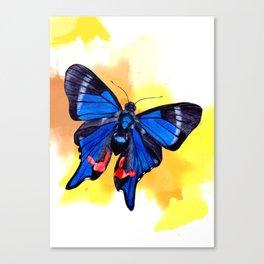 Blueberry Breeze Splash Canvas Print