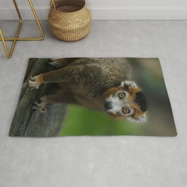 Crowned Lemur Looking At You Rug