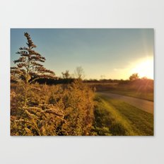 Autumn Fields 2 Canvas Print