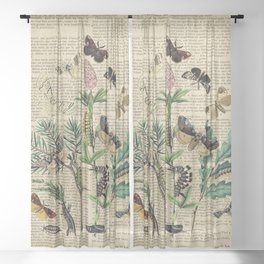 Book Art Caterpillar, Moths & Butterflies Sheer Curtain