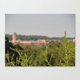 Ann Arbor MI Canvas Print