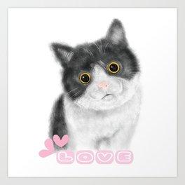 Cat's love Art Print
