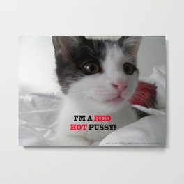 Sophia The Cat #1 [Tex's Owner] Metal Print