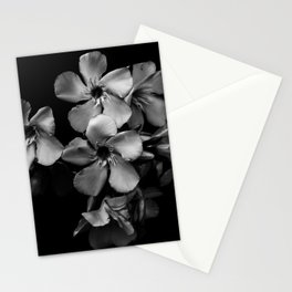 Oleander flowers in black and white Stationery Cards