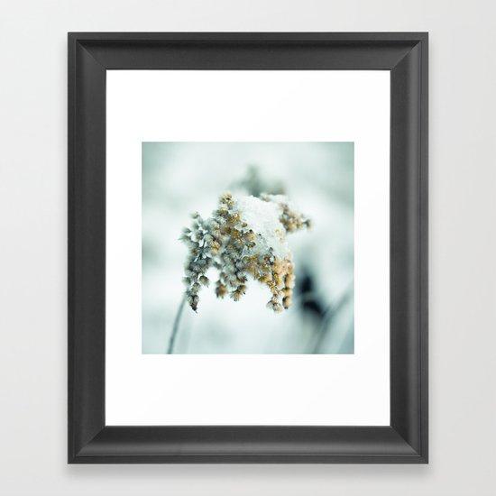 Frost & beauty Framed Art Print