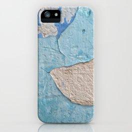 011 iPhone Case