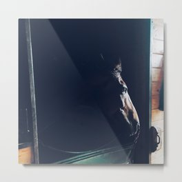 Kentucky Racehorse Metal Print