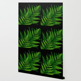 Fern Fronds on Black Wallpaper