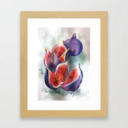 Fig Watercolor Fruits Framed Art Print