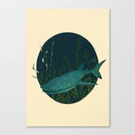 Toni the shark whale Canvas Print