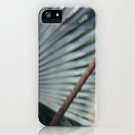 Palm Abstract iPhone Case