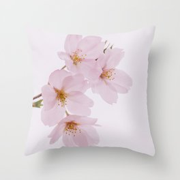 Beautiful spring cherry blossoms at Yoyogi Park in Tokyo Throw Pillow