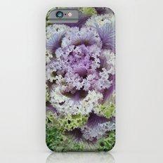 Little Cabbage Slim Case iPhone 6s