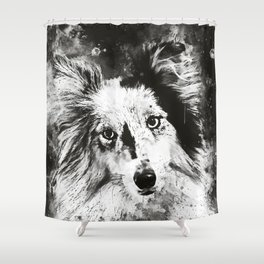 border collie dog 5 portrait wsbw Shower Curtain
