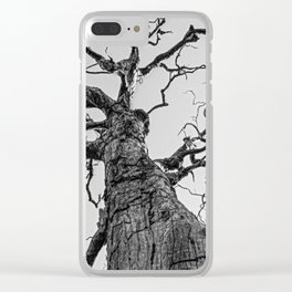Dead Tree Clear iPhone Case