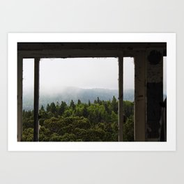 The Forest View Art Print