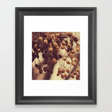 Autumn life Framed Art Print