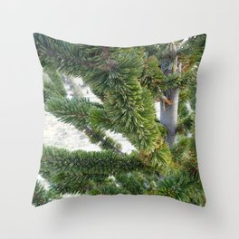 Bristlecone pine needles Throw Pillow