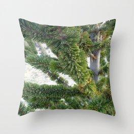 Bristlecone pine needles Throw Pillow
