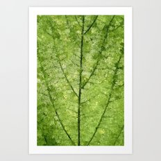 Nature Veins Art Print